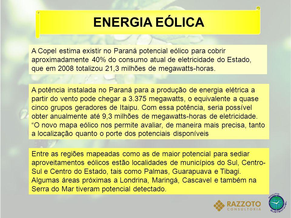 A Copel estima existir no Paraná potencial eólico para cobrir aproximadamente 40% do consumo atual de eletricidade do Estado, que em 2008 totalizou 21