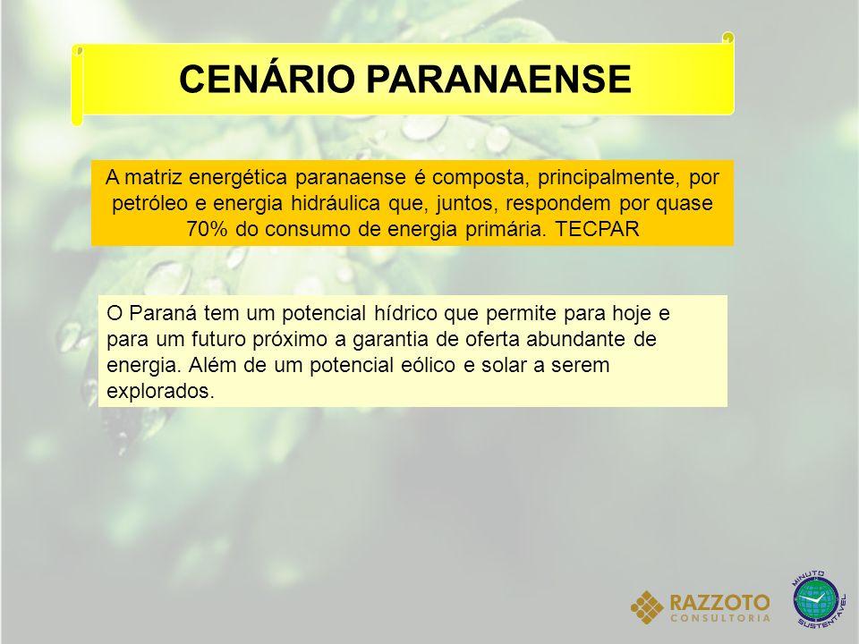 A matriz energética paranaense é composta, principalmente, por petróleo e energia hidráulica que, juntos, respondem por quase 70% do consumo de energi