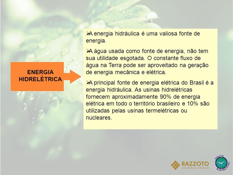POTENCIAL HIDRAULICO BRASILEIRO Seu potencial hidráulico é reconhecido como o terceiro maior do mundo, ficando atrás apenas da Rússia e da China.
