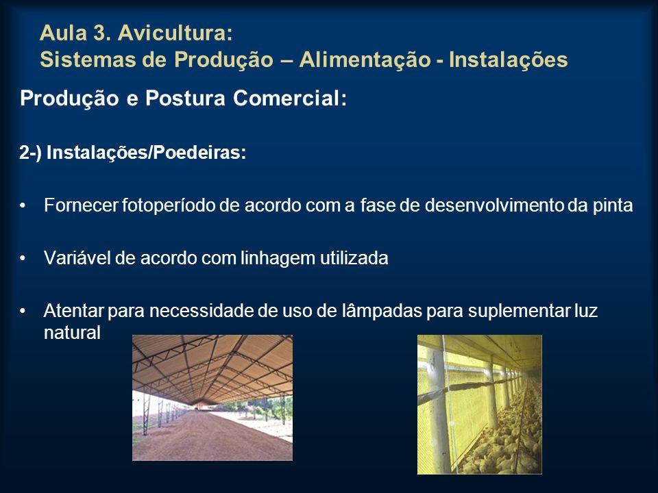 Aula 3. Avicultura: Sistemas de Produção – Alimentação - Instalações Produção e Postura Comercial: 2-) Instalações/Poedeiras: Fornecer fotoperíodo de