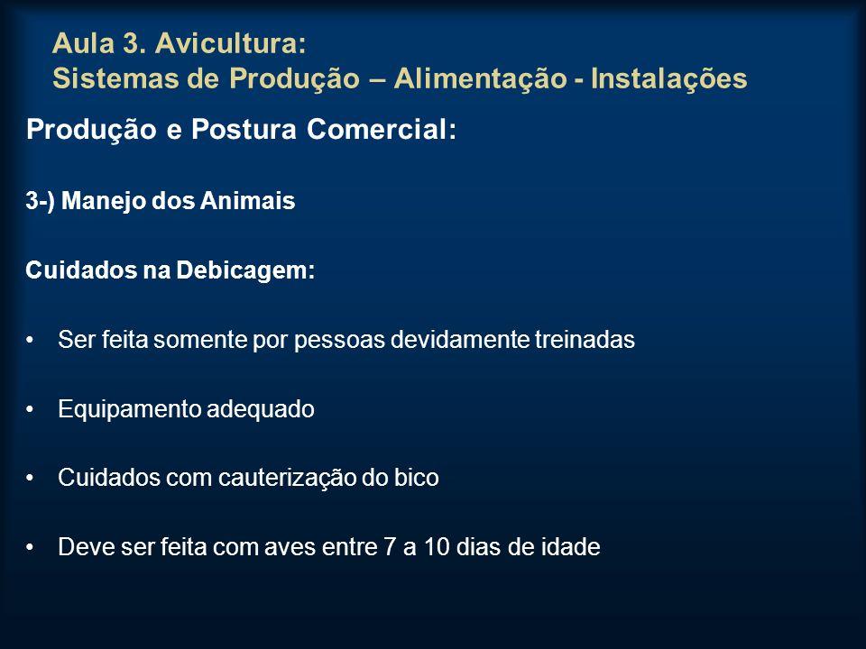 Aula 3. Avicultura: Sistemas de Produção – Alimentação - Instalações Produção e Postura Comercial: 3-) Manejo dos Animais Cuidados na Debicagem: Ser f