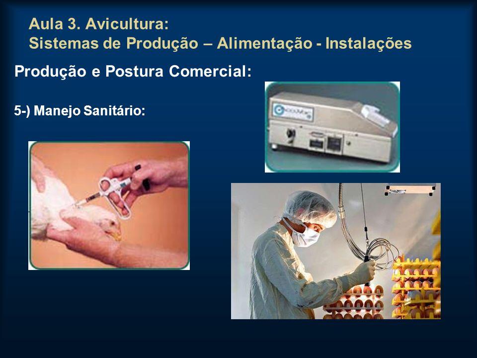 Aula 3. Avicultura: Sistemas de Produção – Alimentação - Instalações Produção e Postura Comercial: 5-) Manejo Sanitário: