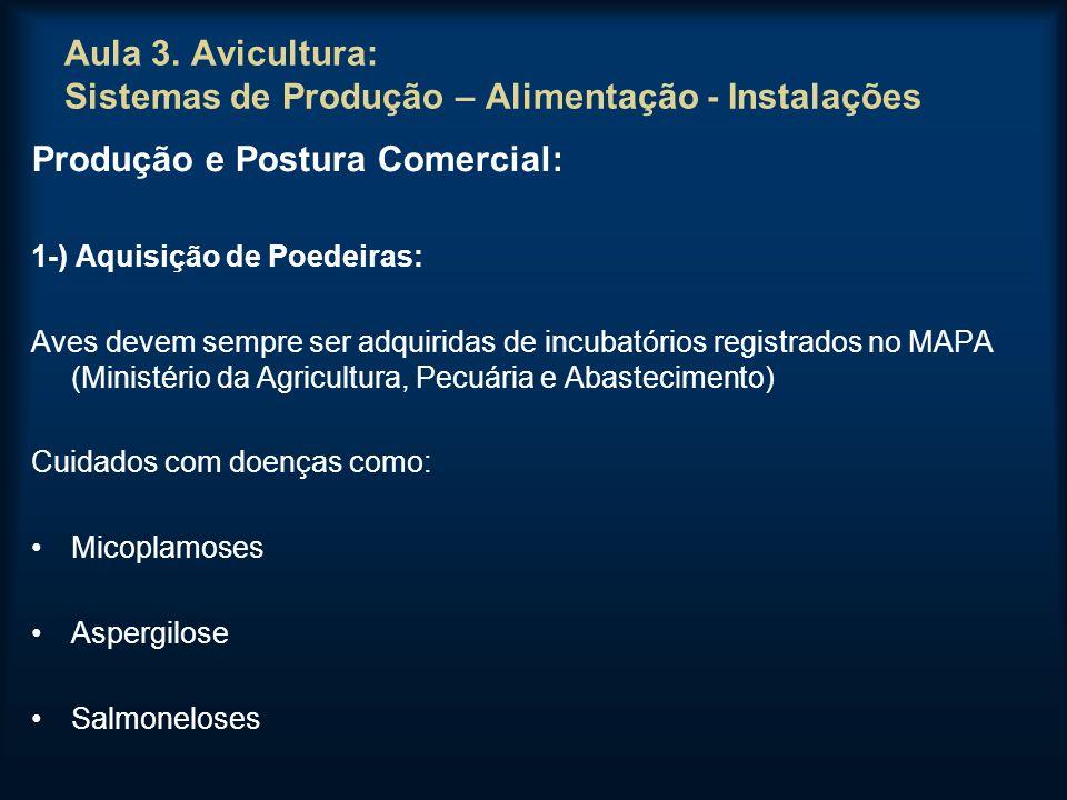 Aula 3. Avicultura: Sistemas de Produção – Alimentação - Instalações Produção e Postura Comercial: 1-) Aquisição de Poedeiras: Aves devem sempre ser a