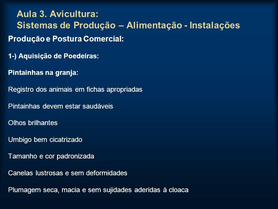 Aula 3. Avicultura: Sistemas de Produção – Alimentação - Instalações Produção e Postura Comercial: 1-) Aquisição de Poedeiras: Pintainhas na granja: R
