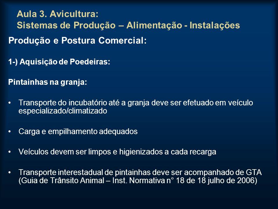 Aula 3. Avicultura: Sistemas de Produção – Alimentação - Instalações Produção e Postura Comercial: 1-) Aquisição de Poedeiras: Pintainhas na granja: T