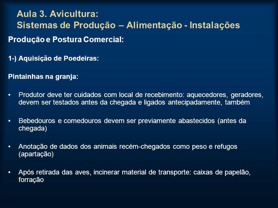 Aula 3. Avicultura: Sistemas de Produção – Alimentação - Instalações Produção e Postura Comercial: 1-) Aquisição de Poedeiras: Pintainhas na granja: P