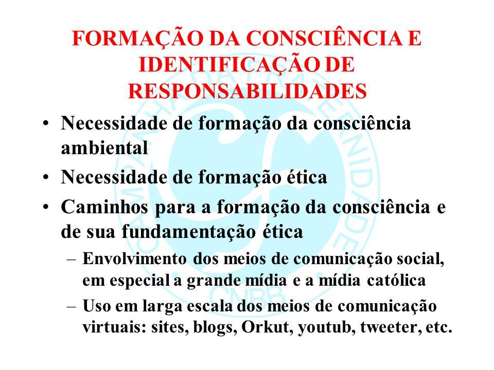 FORMAÇÃO DA CONSCIÊNCIA E IDENTIFICAÇÃO DE RESPONSABILIDADES Necessidade de formação da consciência ambiental Necessidade de formação ética Caminhos para a formação da consciência e de sua fundamentação ética –Envolvimento dos meios de comunicação social, em especial a grande mídia e a mídia católica –Uso em larga escala dos meios de comunicação virtuais: sites, blogs, Orkut, youtub, tweeter, etc.