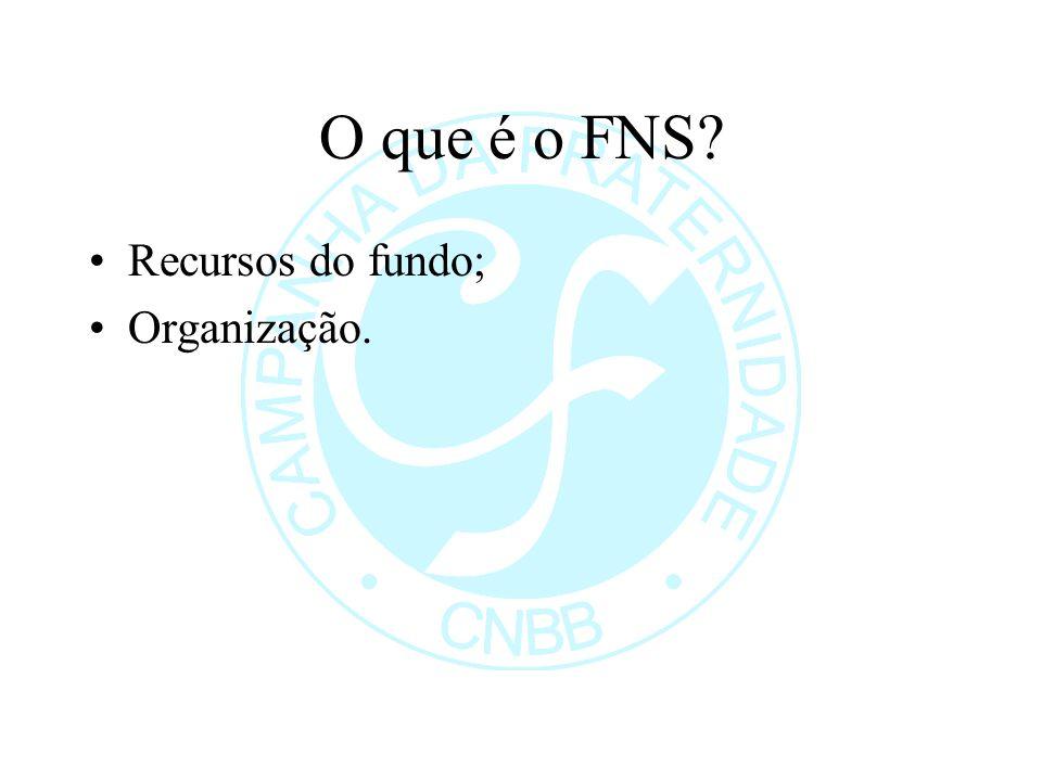 O que é o FNS? Recursos do fundo; Organização.