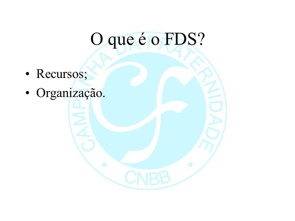 O que é o FDS? Recursos; Organização.