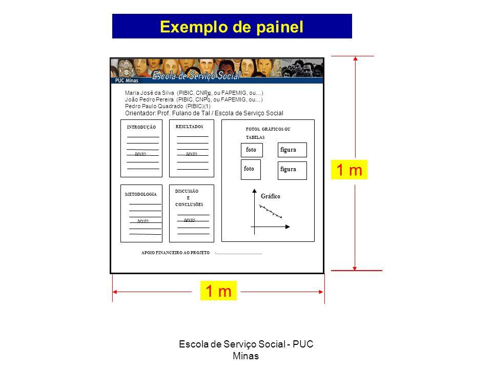 Escola de Serviço Social - PUC Minas Desafios do Serviço Social no judiciário ) 1 APOIO FINANCEIRO AO PROJETO:........................................