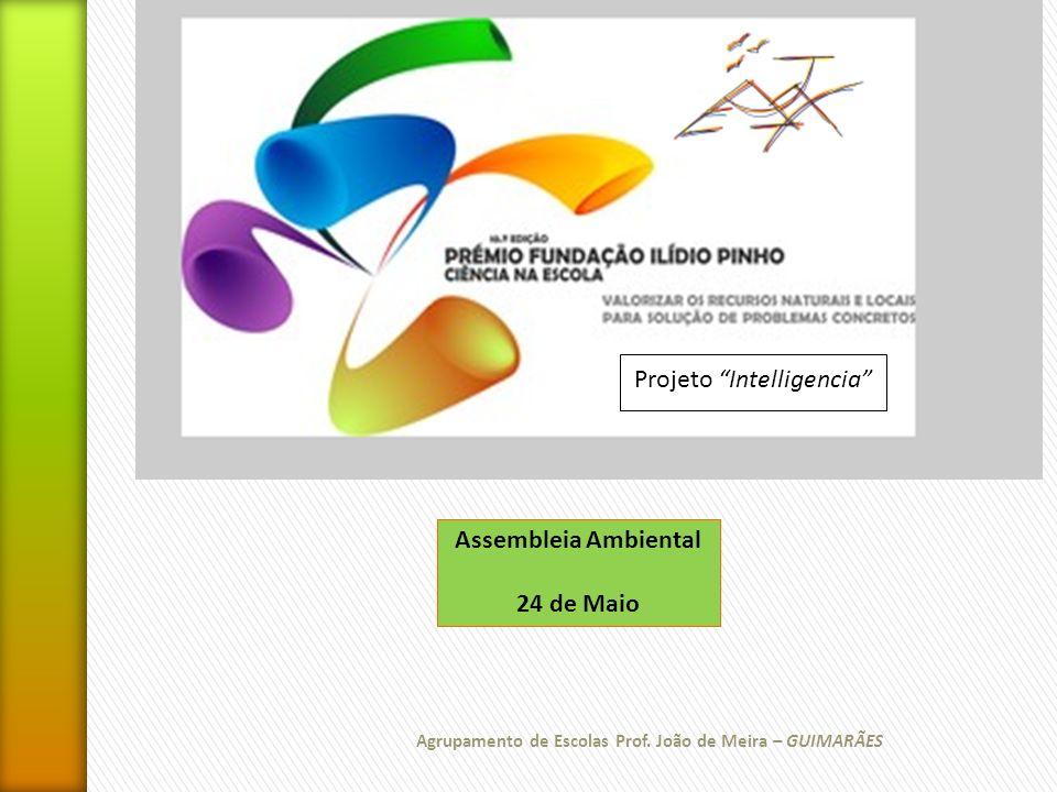 Agrupamento de Escolas Prof. João de Meira – GUIMARÃES Assembleia Ambiental 24 de Maio Projeto Intelligencia