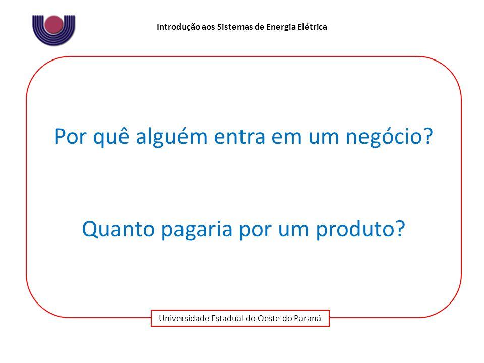 Universidade Estadual do Oeste do Paraná Introdução aos Sistemas de Energia Elétrica Por quê alguém entra em um negócio? Quanto pagaria por um produto