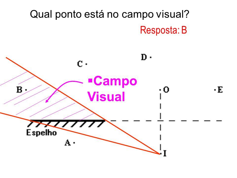 Qual ponto está no campo visual? Campo Visual Resposta: B