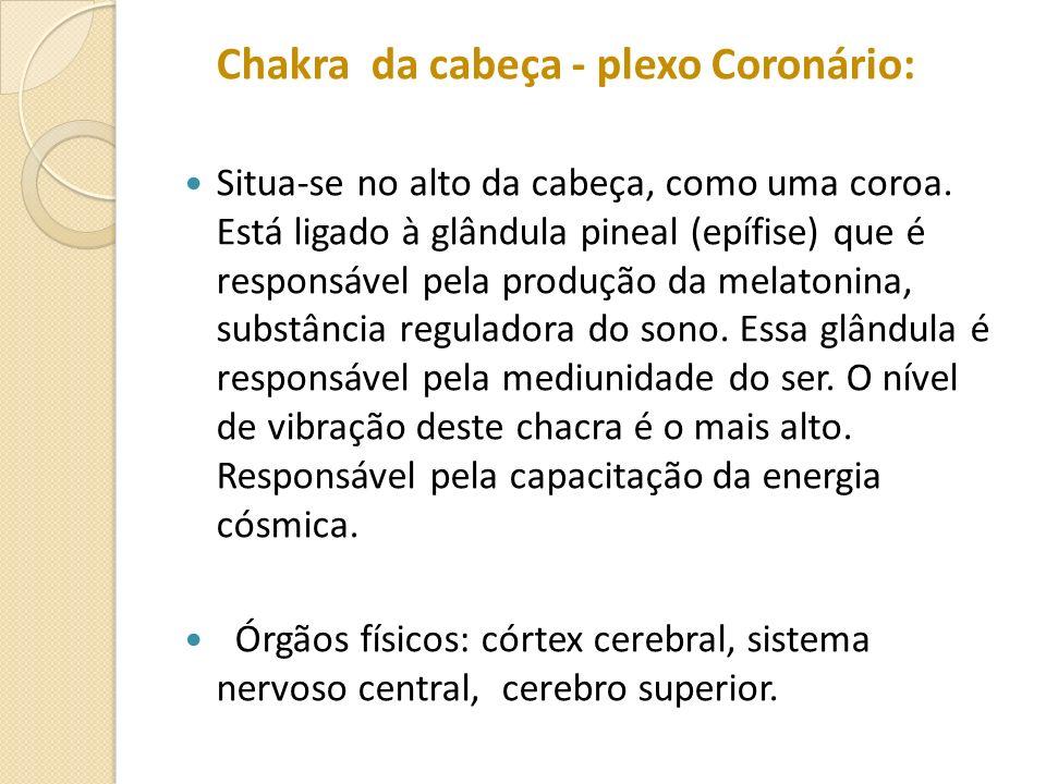 Chakra da cabeça - plexo Coronário: Situa-se no alto da cabeça, como uma coroa. Está ligado à glândula pineal (epífise) que é responsável pela produçã