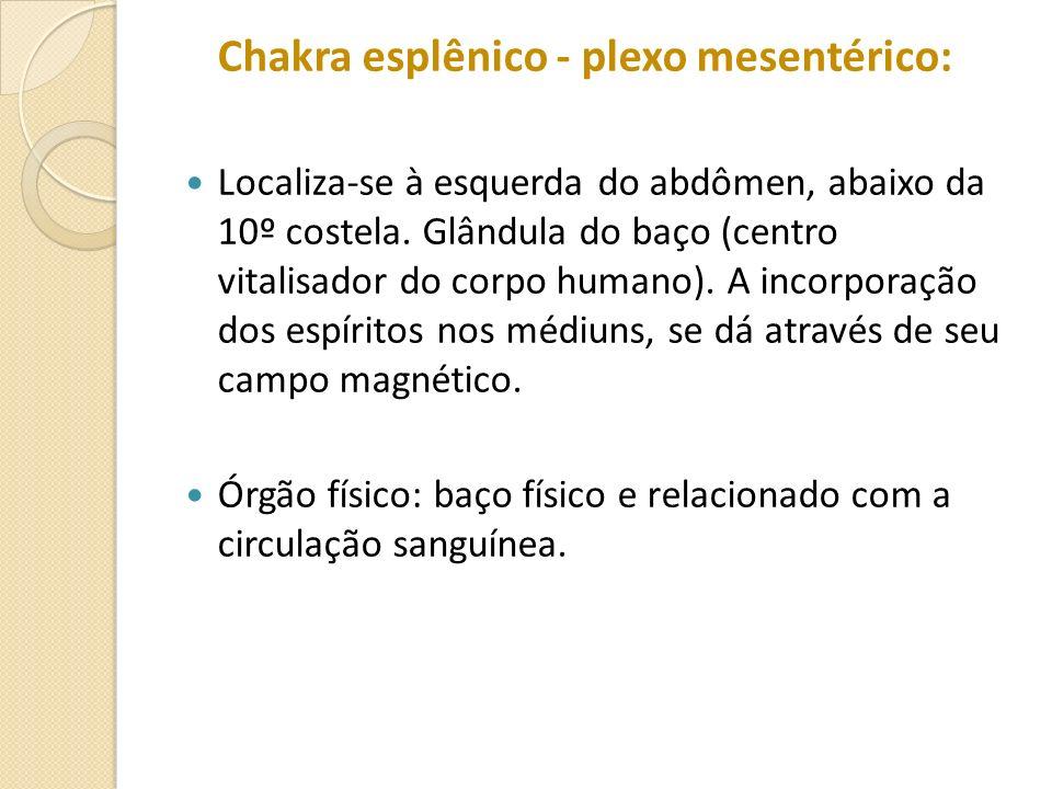 Chakra esplênico - plexo mesentérico: Localiza-se à esquerda do abdômen, abaixo da 10º costela. Glândula do baço (centro vitalisador do corpo humano).