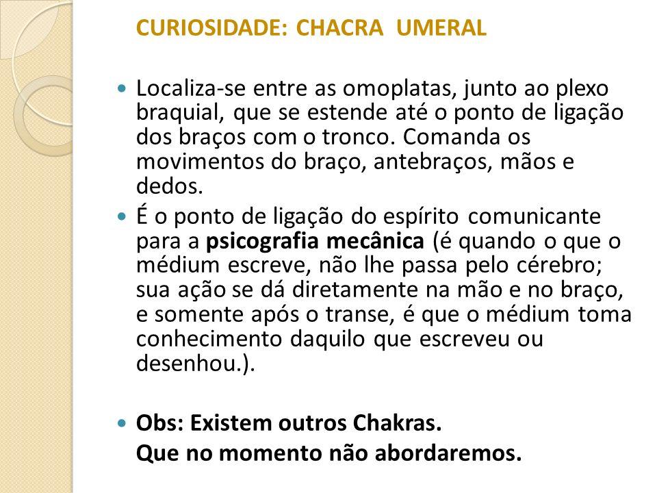 CURIOSIDADE: CHACRA UMERAL Localiza-se entre as omoplatas, junto ao plexo braquial, que se estende até o ponto de ligação dos braços com o tronco. Com