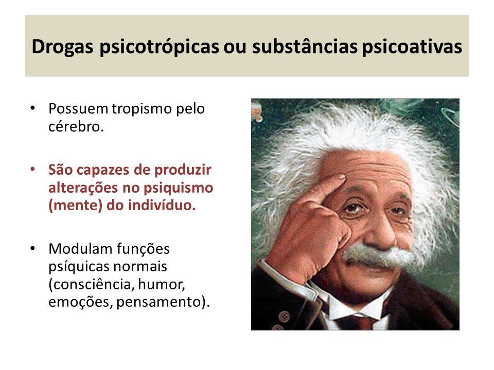 Drogas psicotrópicas ou substâncias psicoativas Possuem tropismo pelo cérebro.