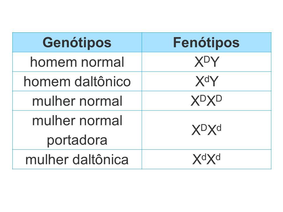 GenótiposFenótipos homem normalXDYXDY homem daltônicoXdYXdY mulher normalXDXDXDXD mulher normal portadora XDXdXDXd mulher daltônicaXdXdXdXd