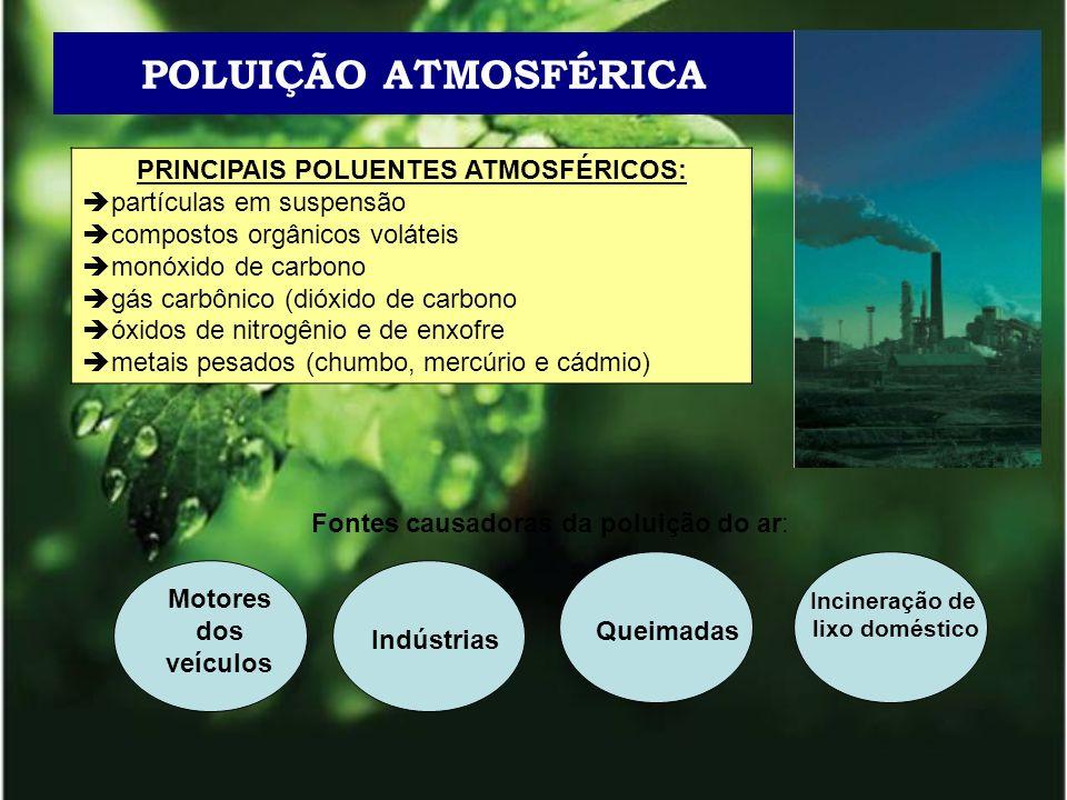 POLUIÇÃO ATMOSFÉRICA PRINCIPAIS POLUENTES ATMOSFÉRICOS: partículas em suspensão compostos orgânicos voláteis monóxido de carbono gás carbônico (dióxid