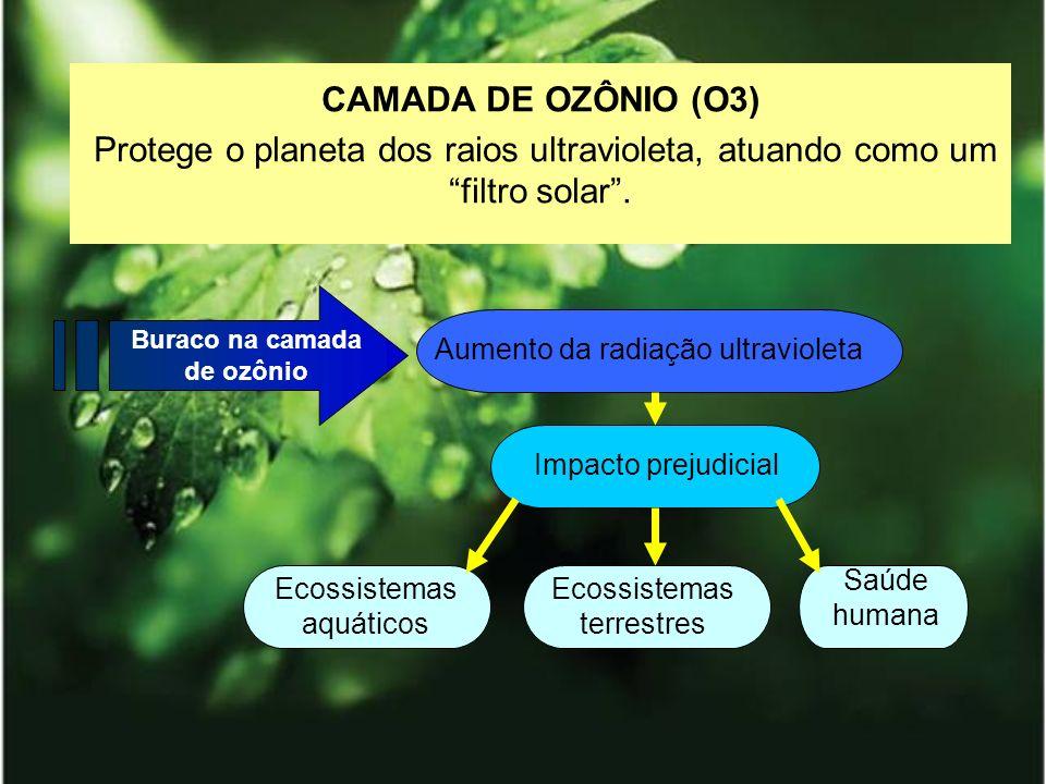 CAMADA DE OZÔNIO (O3) Protege o planeta dos raios ultravioleta, atuando como um filtro solar. Buraco na camada de ozônio Aumento da radiação ultraviol