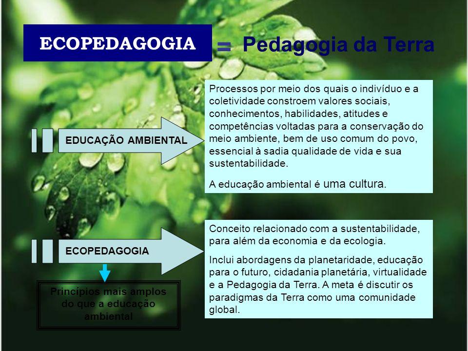 ECOPEDAGOGIA = Pedagogia da Terra Processos por meio dos quais o indivíduo e a coletividade constroem valores sociais, conhecimentos, habilidades, ati