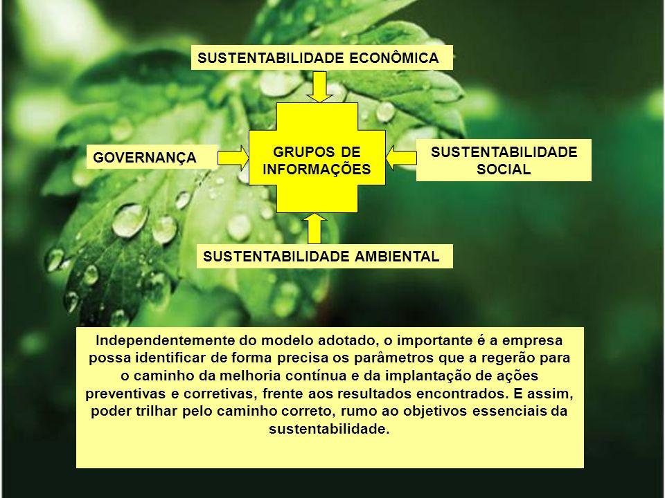 GRUPOS DE INFORMAÇÕES GOVERNANÇA SUSTENTABILIDADE AMBIENTAL SUSTENTABILIDADE SOCIAL SUSTENTABILIDADE ECONÔMICA Independentemente do modelo adotado, o