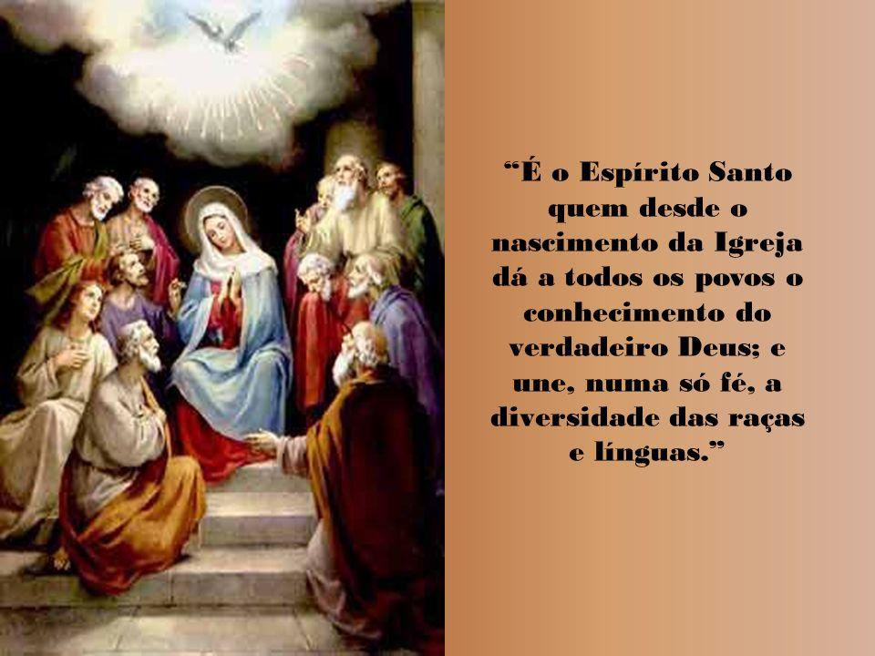 Enviai o vosso Espírito, Senhor, e da terra toda a face renovai. De repente, veio do céu um ruído, como se soprasse um vento impetuoso, e encheu toda