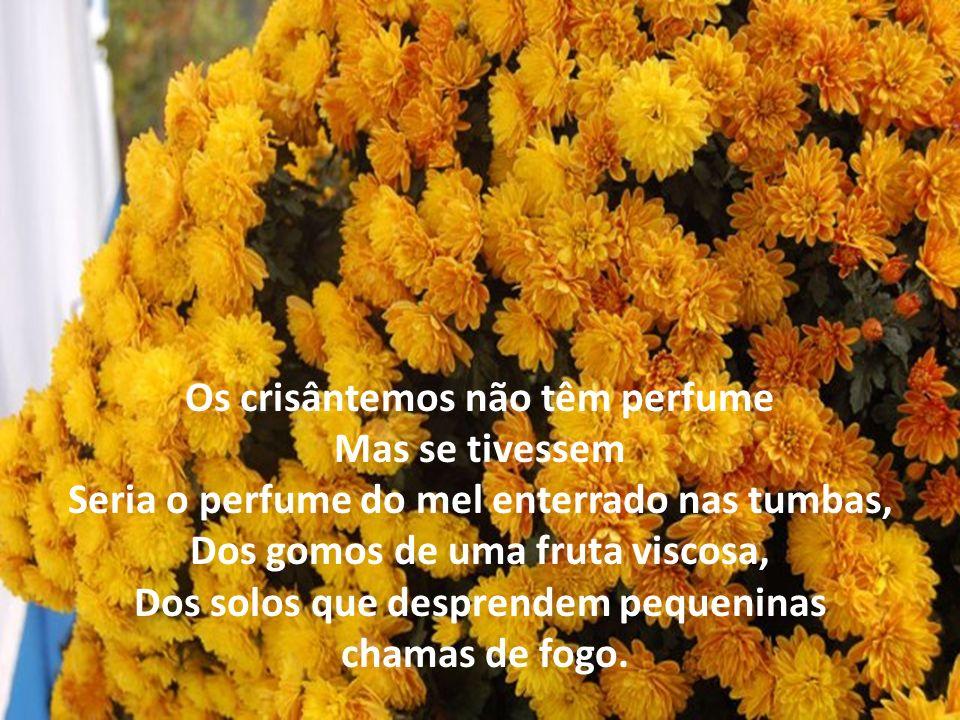 Os crisântemos não têm perfume Mas se tivessem Seria o perfume do mel enterrado nas tumbas, Dos gomos de uma fruta viscosa, Dos solos que desprendem pequeninas chamas de fogo.