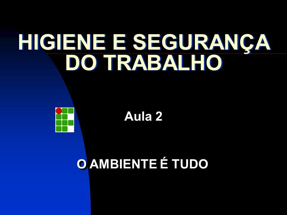 HIGIENE E SEGURANÇA DO TRABALHO Aula 2 O AMBIENTE É TUDO
