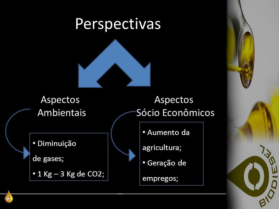 Perspectivas Aspectos Ambientais Aspectos Sócio Econômicos Diminuição de gases; 1 Kg – 3 Kg de CO2; Aumento da agricultura; Geração de empregos;