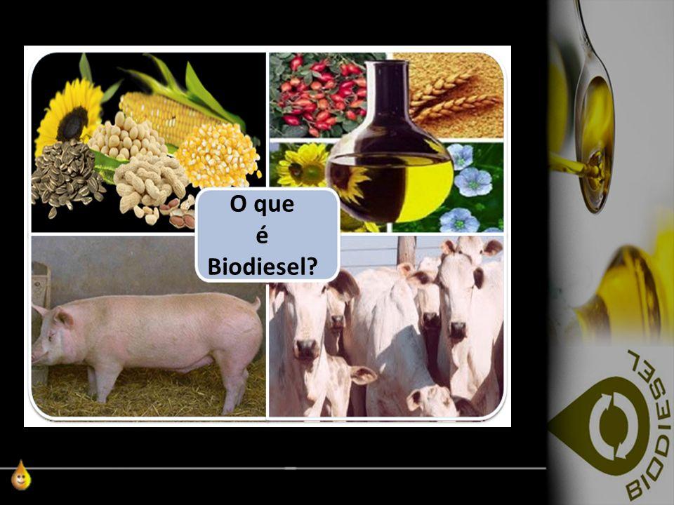 Redhgrh Rhr Rh O que é Biodiesel?