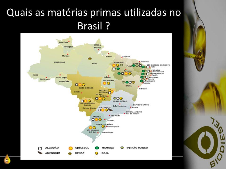Quais as matérias primas utilizadas no Brasil ?