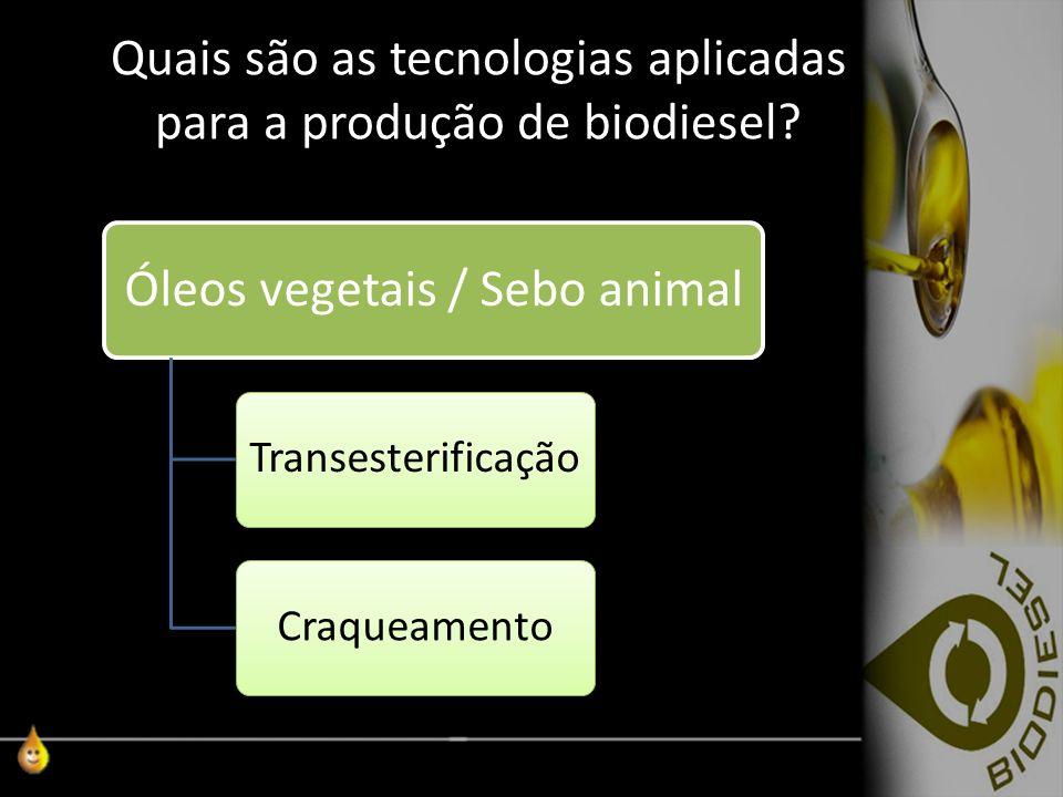 Quais são as tecnologias aplicadas para a produção de biodiesel? Óleos vegetais / Sebo animal TransesterificaçãoCraqueamento