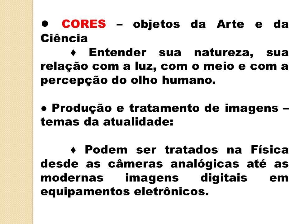 CORES – objetos da Arte e da Ciência Entender sua natureza, sua relação com a luz, com o meio e com a percepção do olho humano. Produção e tratamento