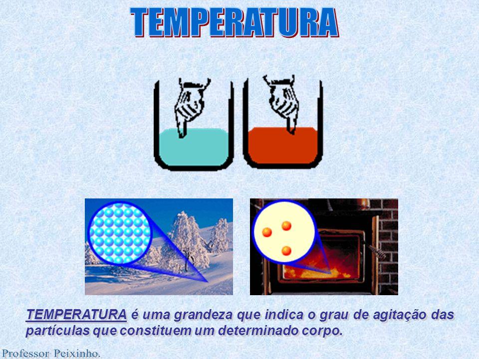 TEMPERATURA é uma grandeza que indica o grau de agitação das partículas que constituem um determinado corpo. TEMPERATURA é uma grandeza que indica o g