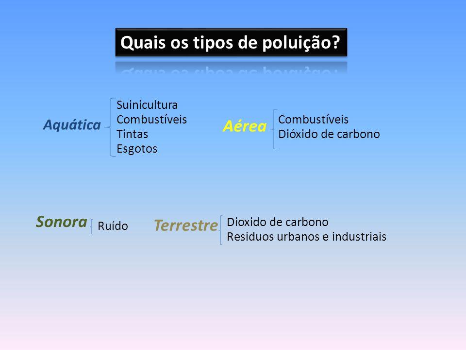 Poluição atmosférica: contaminação do ar por gases e partículas (fumos industriais, fumos dos carros, inceneração de lixos, sprays...) Poluição hídrica (aquática): contaminação da água por elementos nocivos (suiniculturas, detritos, esgotos, produtos químicos, derrame de combustíveis, acidentes de petroleiros/marés negras...) Poluição do solo (terrestre) : contaminação da crosta terrestre por resíduos urbanos e industriais Poluição sonora: resulta da difusão do som num tom demasiado alto – ruído (aviões e outos veículos, fábricas, obras...)