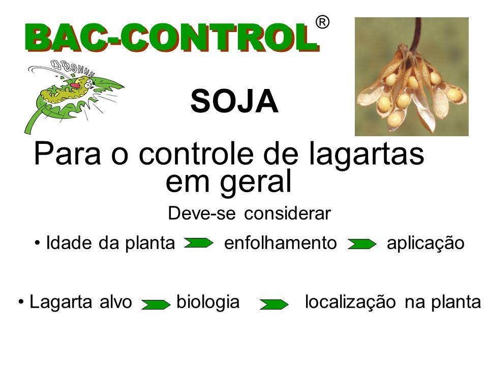 BAC-CONTROL ® INÍCIO DAS APLICAÇÕES Presença das primeiras Lagartas (10 / metro linear) SOJA
