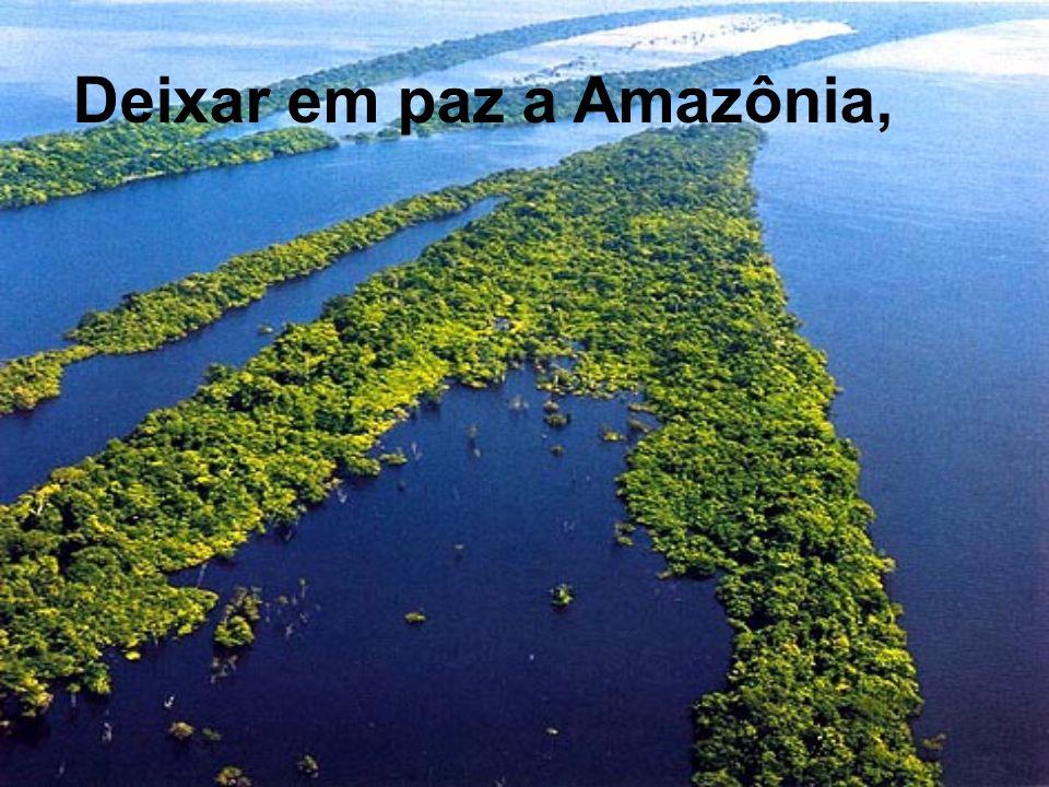 Deixar em paz a Amazônia,