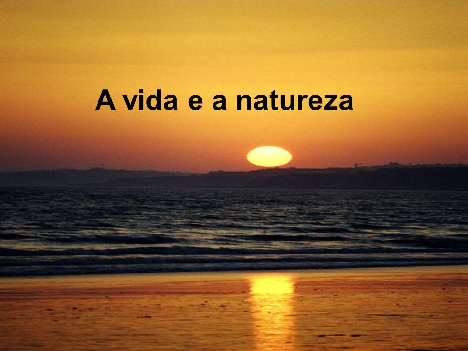 A vida e a natureza
