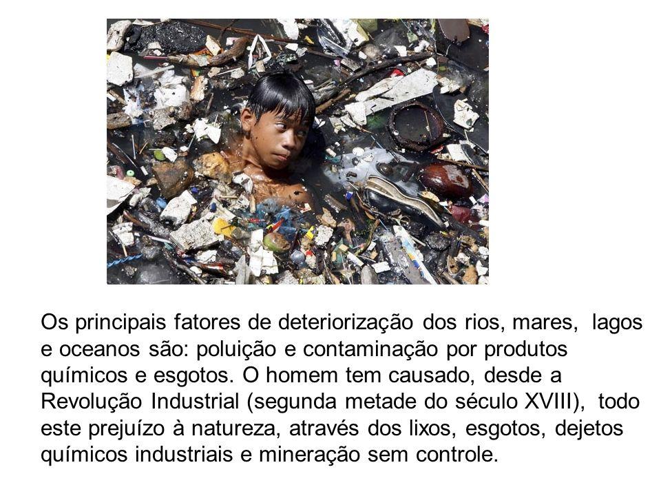 Os principais fatores de deteriorização dos rios, mares, lagos e oceanos são: poluição e contaminação por produtos químicos e esgotos. O homem tem cau