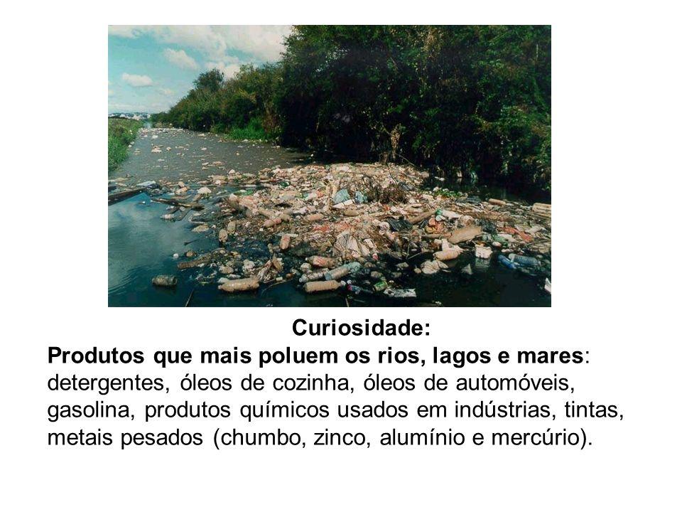 Curiosidade: Produtos que mais poluem os rios, lagos e mares: detergentes, óleos de cozinha, óleos de automóveis, gasolina, produtos químicos usados e
