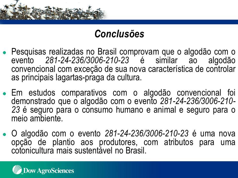 Conclusões l Pesquisas realizadas no Brasil comprovam que o algodão com o evento 281-24-236/3006-210-23 é similar ao algodão convencional com exceção