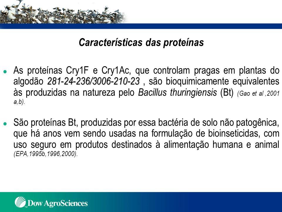 281-24-236/3006-210-23 As proteínas Cry1F e Cry1Ac do evento 281-24-236/3006-210-23 l São produzidas pela ação dos genes cry1F e cry1Ac introduzidos nas plantas por transformação mediada por outra bactéria não patogênica, Agrobacterium tumefasciens (Narva et al., 2001 a,b); l Os genes cry1F e cry1Ac, introduzidos nas plantas, tem padrão genético definido como se fossem genes naturais do algodoeiro, sendo estáveis ao longo de gerações ( Silva et al., 2006); l As proteínas inseticidas Cry1F e Cry1Ac, produzidas pelas plantas, se expressam em vários tecidos: folha jovem (3-6 semanas), folha terminal, botão floral, flor, capulho jóvem, plântula inteira, planta inteira na polinizacão, planta inteira na desfolha, raiz da plântula, raiz na polinização, raiz na desfolha, pólen e nas sementes (Phillips et al., 2002).