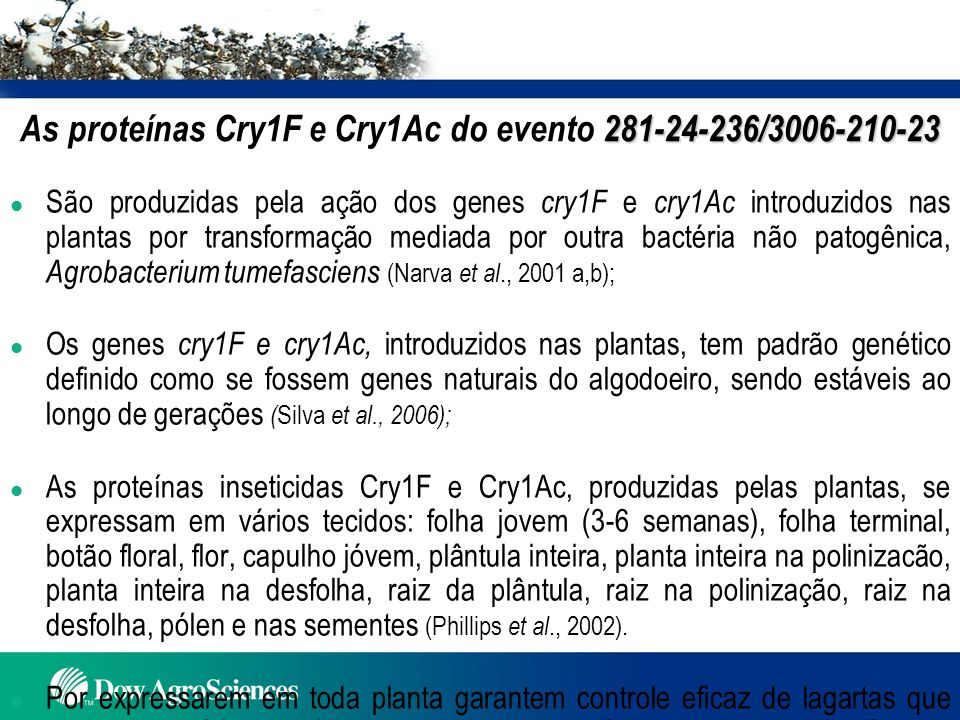 Conclusões l Pesquisas realizadas no Brasil comprovam que o algodão com o evento 281-24-236/3006-210-23 é similar ao algodão convencional com exceção de sua nova característica de controlar as principais lagartas-praga da cultura.