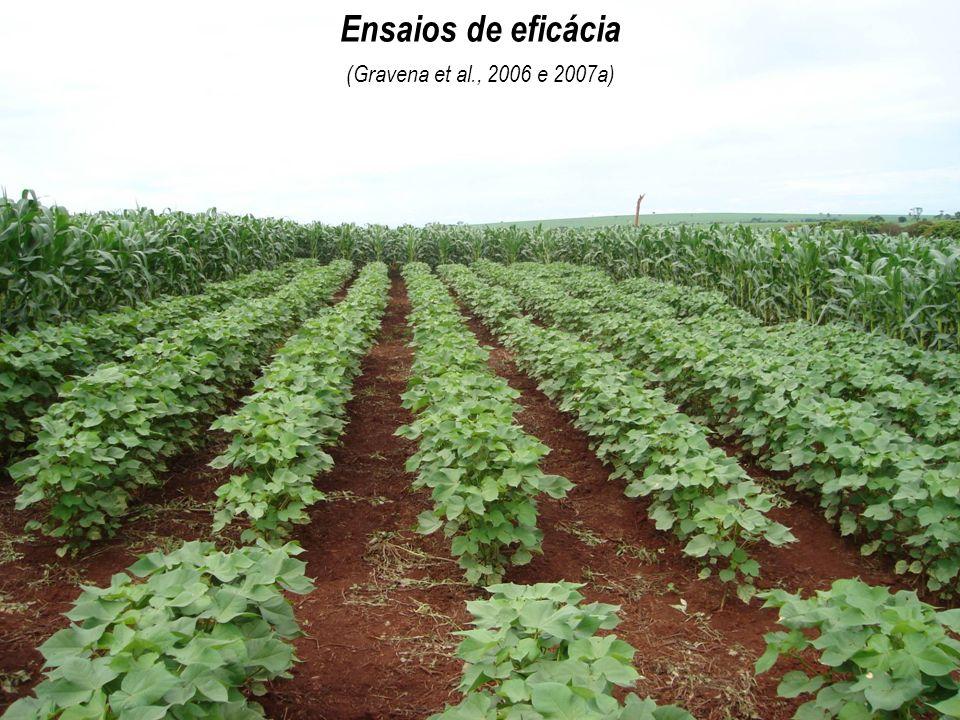 Ensaios de eficácia (Gravena et al., 2006 e 2007a)