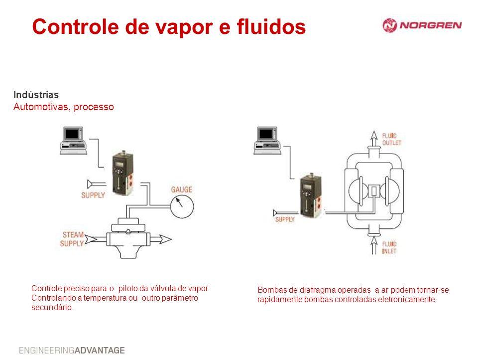 Controle de vapor e fluidos Indústrias Automotivas, processo Bombas de diafragma operadas a ar podem tornar-se rapidamente bombas controladas eletroni