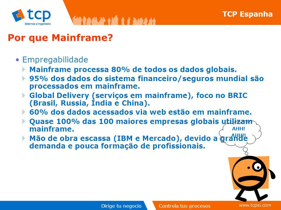 Dirige tu negocioControla tus procesos Empregabilidade Mainframe processa 80% de todos os dados globais.