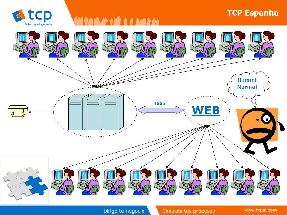 Dirige tu negocioControla tus procesos TCP Espanha WEB Humm! Normal 1995