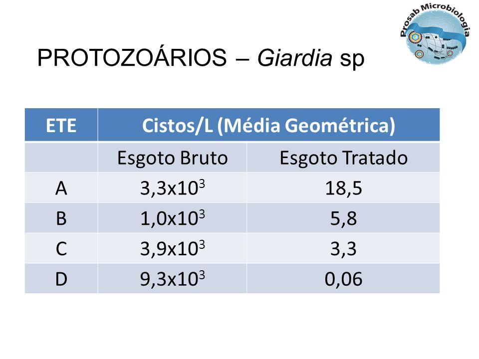 ETECistos/L (Média Geométrica) Esgoto BrutoEsgoto Tratado A3,3x10 3 18,5 B1,0x10 3 5,8 C3,9x10 3 3,3 D9,3x10 3 0,06 PROTOZOÁRIOS – Giardia sp