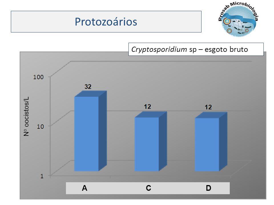 Protozoários Cryptosporidium sp – esgoto bruto A C D N o oocistos/L